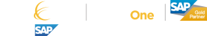 Consensus Sap Business One Gold Partner