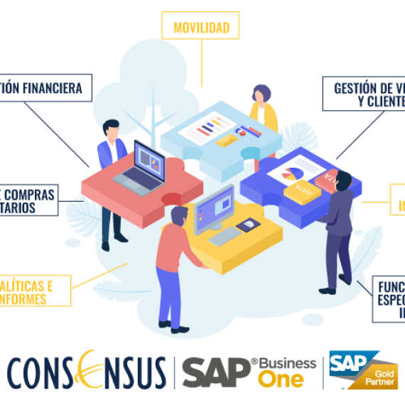 ¿Qué es SAP Business One Consensus?