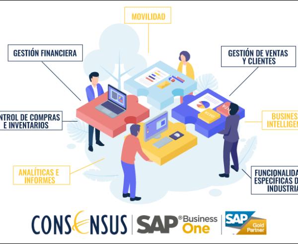 ¿Qué es SAP Business One Consensus?